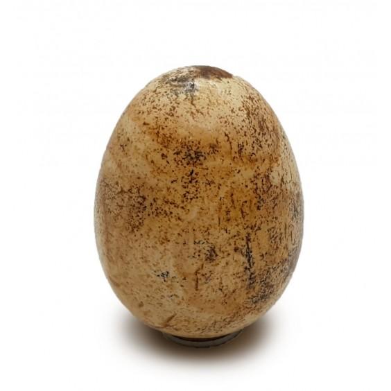 Αυγό ίασπις τοπίο